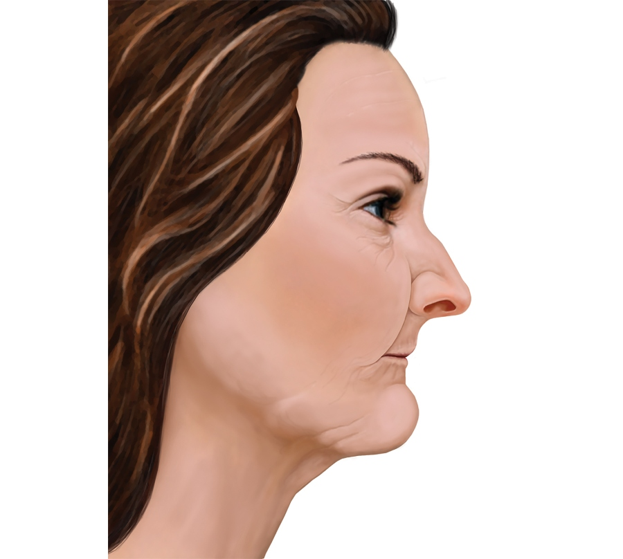 graphical display of woman face